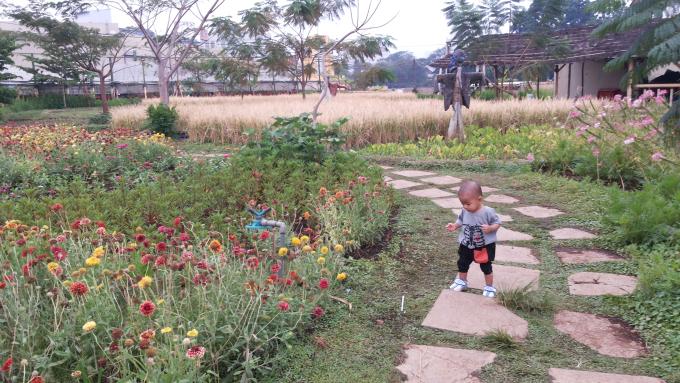 Gardenice, PVJ Mall, Bandung