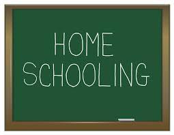 Apa Itu Homeschooling atau Home Education?